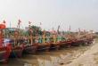 Tàu thuyền, ngư dân Thái Bình đã vào nơi tránh bão số 7 - Sarika an toàn