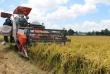 Hiệp định Thương mại tự do giữa Việt Nam và Liên minh châu Âu (EVFTA) – Các cam kết quan trọng trong lĩnh vực nông nghiệp và những điều cần lưu ý