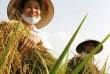 Hội thảo về chân dung người nông dân Việt Nam thời kỳ hội nhập và công bố sách chuyên khảo về bức tranh sinh kế của người nông dân