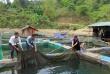 Nhìn lại 6 năm thực hiện Nghị quyết 76 của Quốc hội về thực hiện mục tiêu giảm nghèo bền vững ở Sơn La
