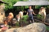 Đẩy mạnh các hoạt động vay vốn giải quyết việc làm ở Lai Châu