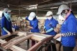 Hỗ trợ đến 30% mức đóng đối với người tham gia bảo hiểm tai nạn lao động tự nguyện