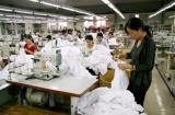 Nam Định: 100% các địa phương, cơ quan, doanh nghiệp thực hiện kế hoạch hưởng ứng Tháng hành động ATVSLĐ
