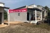 Công ty Cổ phần Long Hậu trao tặng nhà tình thương cho gia đình có hoàn cảnh khó khăn xã Phước Lại