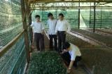 Quảng Nam:  Tạo điều kiện thuận lợi cho người nghèo tiếp cận với chính sách giảm nghèo