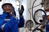 Thanh Hóa: Tạo điều kiện thuận lợi cho lao động nước ngoài làm việc trên địa bàn
