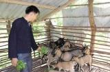 Bắc Giang: Tỷ lệ hộ nghèo giảm 2,24% trong năm 2018