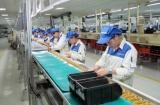 Hưng Yên: Sôi nổi khí thế lao động, sản xuất đầu xuân