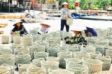 Ninh Bình: Chú trọng tạo việc làm cho lao động nông thôn