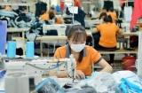 Bảo vệ và hỗ trợ phụ nữ trong các ngành nghề độc hại, nguy hiểm: Kinh nghiệm quốc tế và một số kiến nghị
