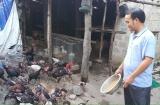 Quảng Bình: Thoát nghèo nhờ vốn vay giải quyết việc làm từ ngân hàng chính sách
