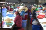 Ninh Thuận: Những hướng đi đúng đắn trong công tác giải quyết việc làm cho người lao động