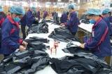 Đảm bảo công tác quản lý lao động an toàn thời điểm Việt Nam công bố dịch bệnh