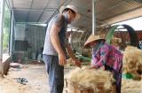 Bến Tre: Hỗ trợ vốn vay tạo việc làm cho người lao động