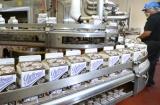 Nhà máy Sữa của Vinamilk tại Mỹ ủng hộ 23 ngàn lít sữa cho người dân khó khăn trong đại dịch Covid tại Mỹ