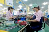 Chăm sóc và nâng cao sức khỏe người lao động, phòng chống bệnh nghề nghiệp