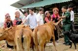 Lai Châu: Tập trung cho mục tiêu xóa đói giảm nghèo