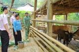 Hiệu quả chính sách giảm nghèo ở Thuận Châu (Sơn La)