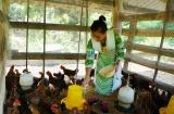 Thái Nguyên nỗ lực phát huy các hoạt động tuyên truyền trong công tác giảm nghèo bền vững