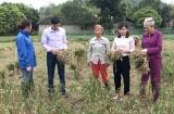 Tuyên Quang huy động nguồn lực cho giảm nghèo bền vững