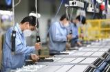 Châu Á – Thái Bình Dương mất 81 triệu việc làm cho đại dịch Covid-19