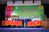 Tập đoàn Công nghiệp Cao su Việt Nam:Vượt qua khó khăn để hoàn thành xuất sắc các chỉ tiêu