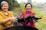 Piloting the production of biochar in Intergenerational Self-Help Clubs