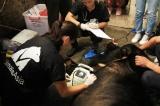 Tổ chức Động vật Châu Á cứu hộ thành công cá thể gấu thứ 200 tại Cao Bằng