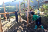 Hoang Su Phi district strives for sustainable poverty reduction