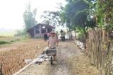 Cao Bằng: Giảm tỷ lệ hộ nghèo theo hướng bền vững