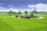 Giải golf Vô địch đồng đội nghiệp dư Đông Nam Á 2019 diễn ra từ ngày 24 - 27 tháng 7 tại Vĩnh Phúc