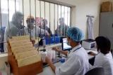 Lào Cai: Tổ chức đa dạng hình thức cai nghiện ma túy cho đối tượng