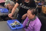 Trung tâm Bảo trợ và Công tác xã hội tỉnh Ninh Bình: Nâng cao chất lượng chăm sóc, nuôi dưỡng các đối tượng bảo trợ
