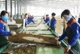 Lào Cai thực hiện hiệu quả chính sách lao động việc làm cho đồng bào dân tộc thiểu số