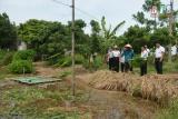 Hiệu quả chương trình vay vốn giải quyết việc làm ở Thái Bình