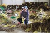 Hòa Bình: Đẩy mạnh giải quyết việc làm cho lao động khu vực nông thôn