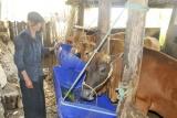 Hà Giang hỗ trợ người nghèo các huyện 30a vươn lên trong cuộc sống