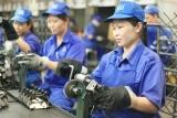 Nhiều lao động mất việc vì dịch bệnh