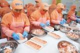 Ninh Thuận: tăng cường các hoạt động trong tháng trọng điểm về an toàn vệ sinh lao động
