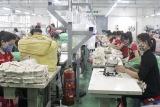 Phú Thọ không tổ chức Lễ phát động Tháng Hành động về ATVSLĐ