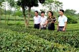 Tuyên Quang tăng cường sự tham gia của phụ nữ vào các vị trí quản lý