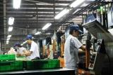 Hải Phòng: Nhiều doanh nghiệp thực hiện tốt công tác an toàn, vệ sinh lao động