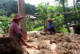 Hà Giang: Hỗ trợ đồng bào dân tộc thiểu số vươn lên thoát nghèo