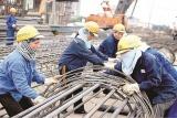 Liên đoàn lao động Hải Phòng nâng cao chất lượng hoạt động trong Tháng ATVSLĐ 2020