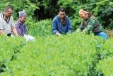 Huyện Lộc Bình (Lạng Sơn): Chuyển biến tích cực trong công tác giảm nghèo