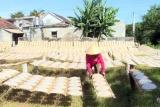 Quảng Bình: Chú trọng giải quyết việc làm cho lao động nông thôn