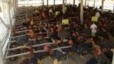 Những tấm gương thương binh làm kinh tế giỏi ở Hải Lăng