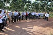 Hướng liên kết 3 bên trong dạy nghề cho lao động nông thôn
