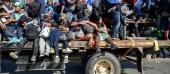 """Hàng nghìn người di cư ồ ạt """"đổ bộ"""", Mỹ sẵn sàng bảo vệ biên giới"""