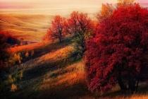 Lãng mạn mùa thu trên khắp thế giới